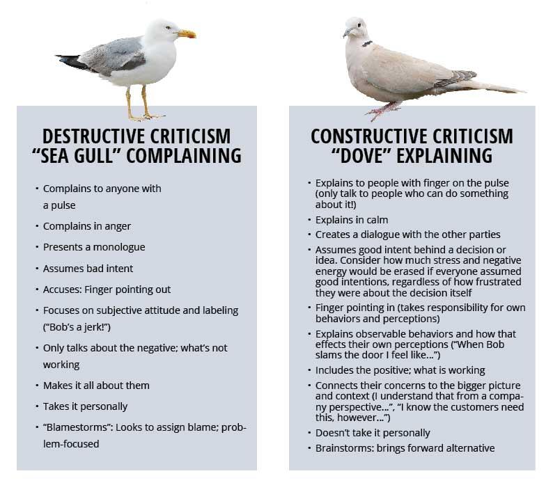 seagulls-doves-chart
