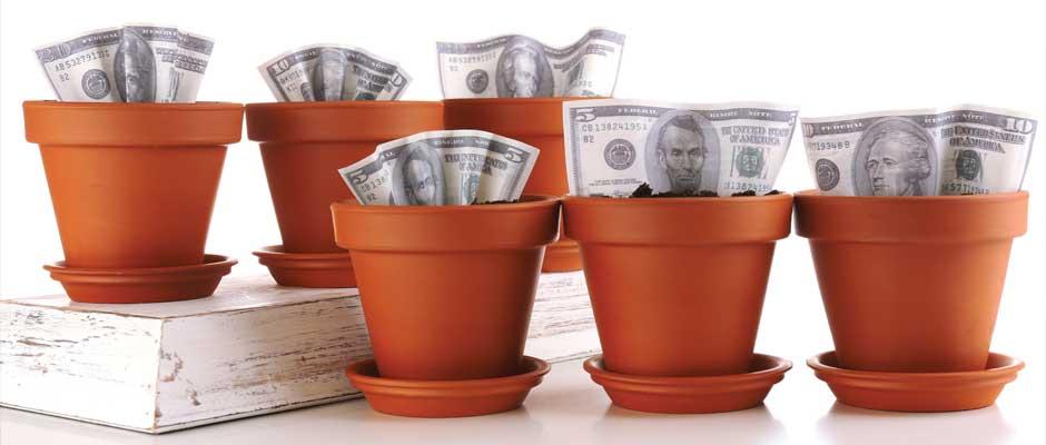 growing niche profits